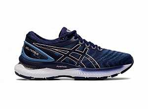 ASICS-GEL-NIMBUS-22-RUNNING-WOMEN-S